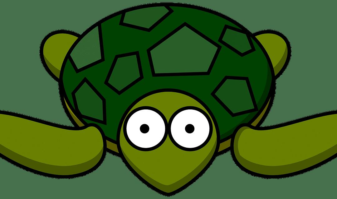 Yoga enfants 3-6 ans: la posture de la tortue :-)