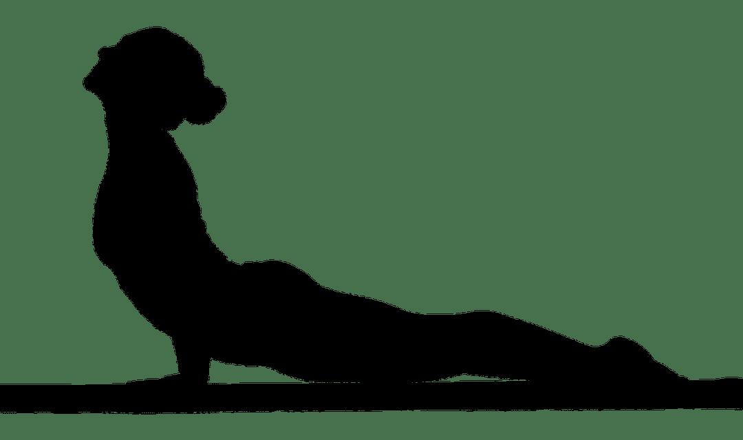 Yoga enfants 3-6 ans: la posture du cobra :-)